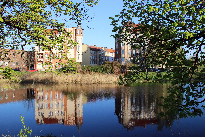 freewolne miasto gdansk by fashion art media