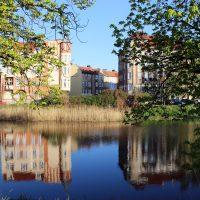 Freewolne Miasto Gdańsk